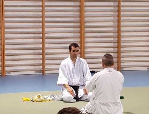 Karate-do adultos