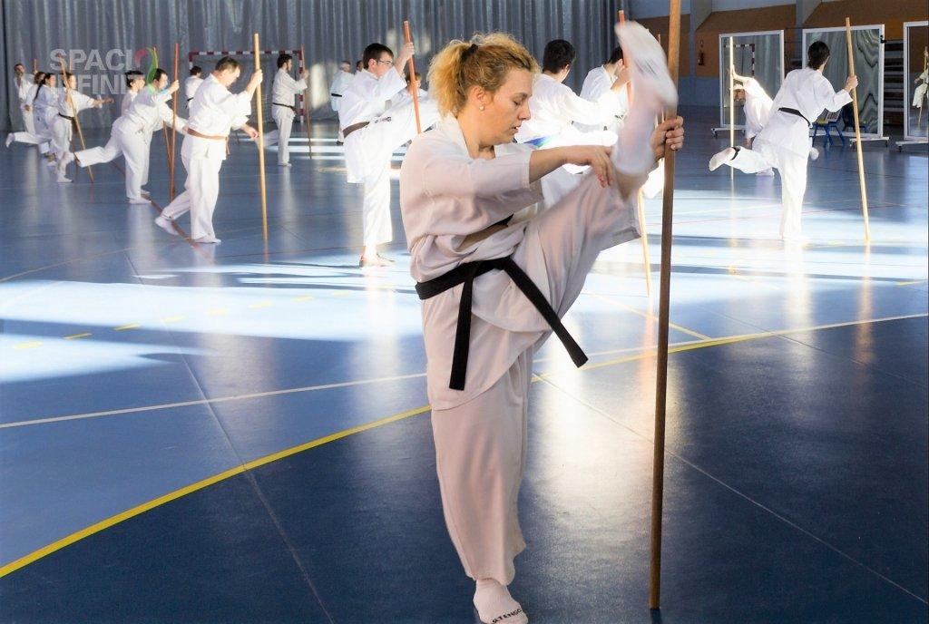 tecnica de karate